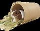kisspng-guinea-pig-rodent-mouse-pet-muro