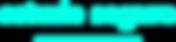 estudeseguro-logo-new-ciano.png
