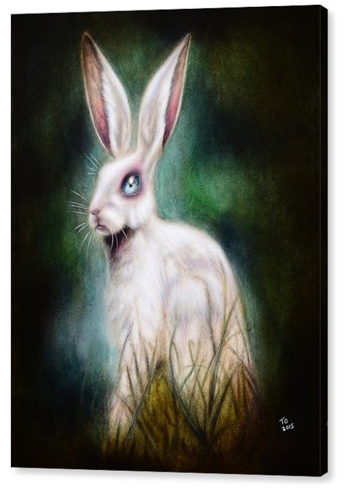 50cm x 70cm Canvas Print of The Hare