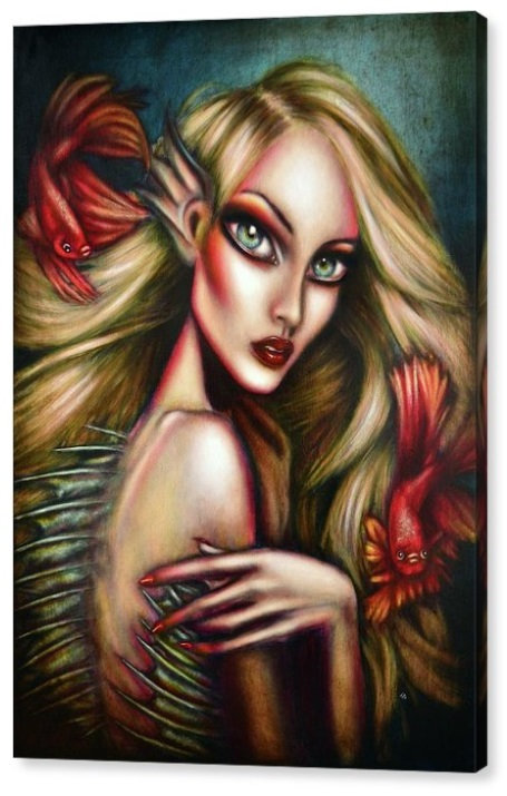 50cm x 70cm Canvas Print of The Mermaid