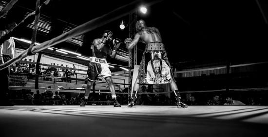 TN State Fair Boxing