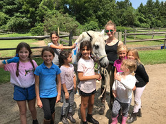 Horse Summer Camp Nassau County.jpg