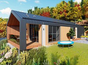 Строительство скандинавских домов