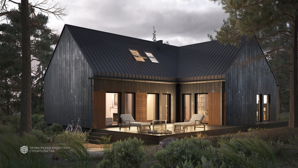 Проект дома ANGAR-463