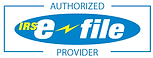 efile provider.png