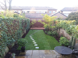 Garden project in Kensington