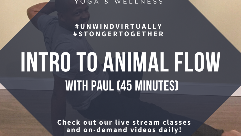 Animal Flow & Yoga Intro