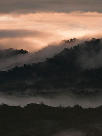 Landscape Bellavista