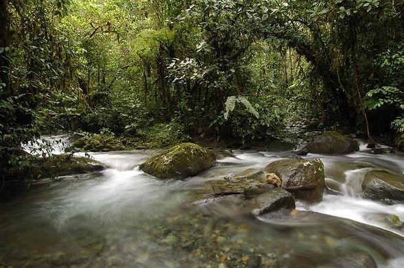 River-min.jpg