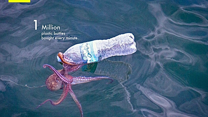 1 Million plastic bottles.jpg