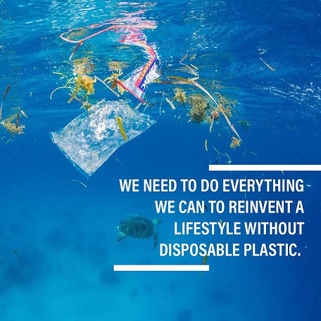 Open Letter No More Plastic_January 2019