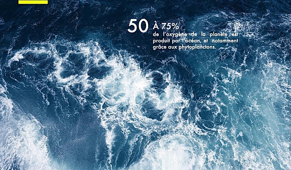 50% de l'oxygene.jpg