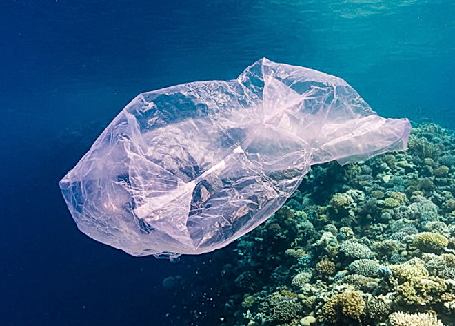Plastic-bag-red-sea-TWITTER-820x410.jpg