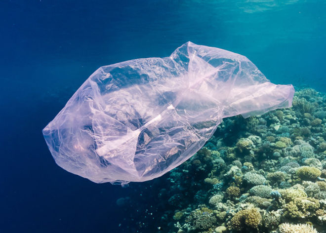 Plastic-bag-red-sea-TWITTER-820x410.jpg
