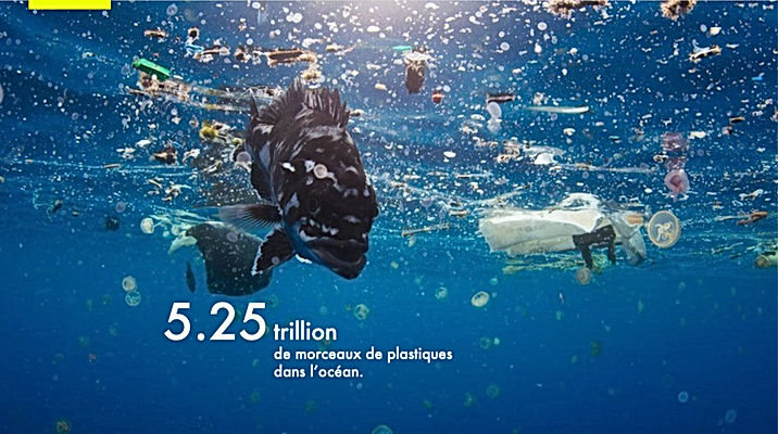 Microplastiques pollution_ocean.jpg
