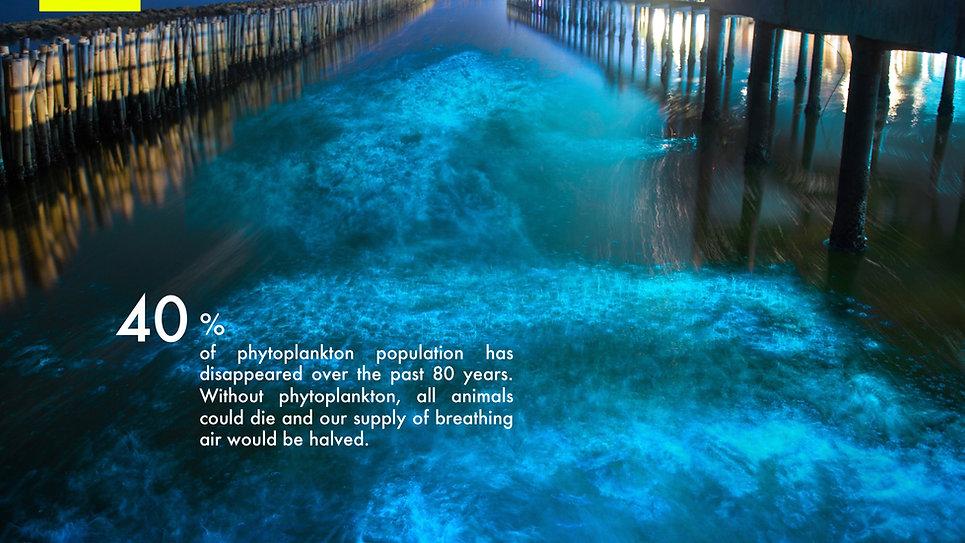 Phytoplankton_EN.jpg