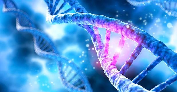 DNA 5.JPG