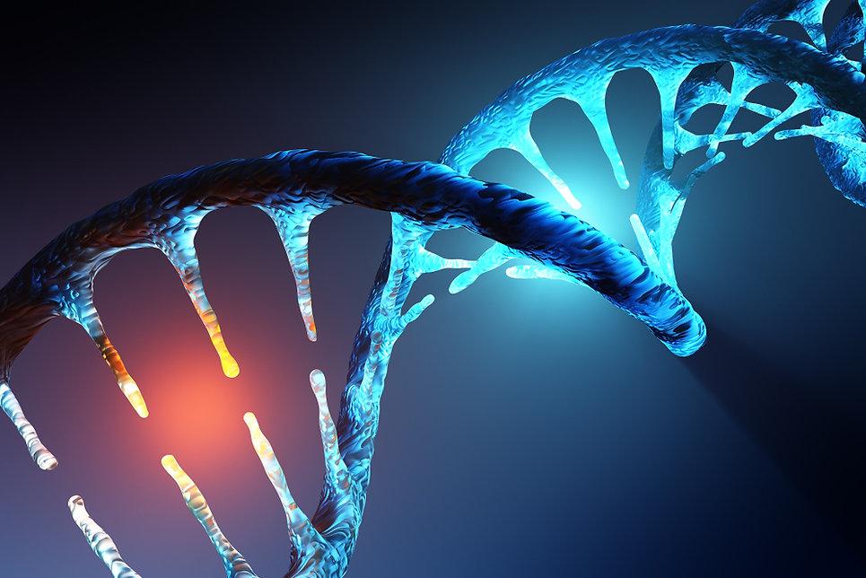 DNA 1.jpg