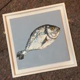 Giles Ward 'Single Fish'