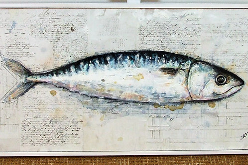 """Devon Mackerel"" by Giles Ward"