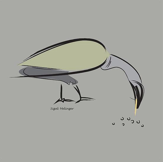 ״ציפור באפור״
