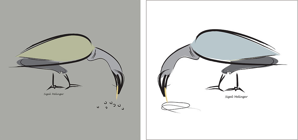 ״ציפורים באפור ולבן״  2 חלקים