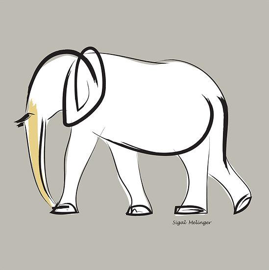 ״פיל לבן״
