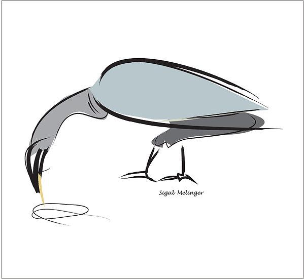 ״ציפור בלבן״