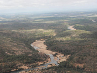 Hell's Gate Dam to Make or Break the Turnbull Government.