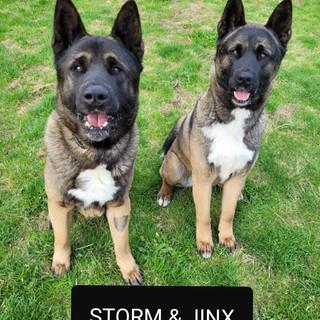 Jinx Storm.jpg