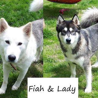 Fiah&Lady3.jpg