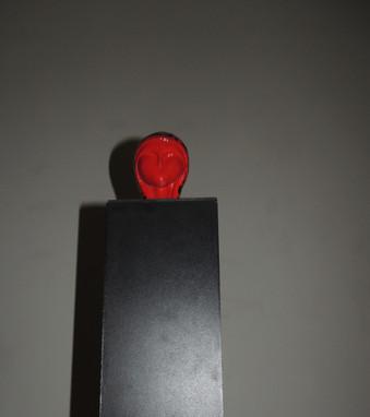 Vénus - 2013