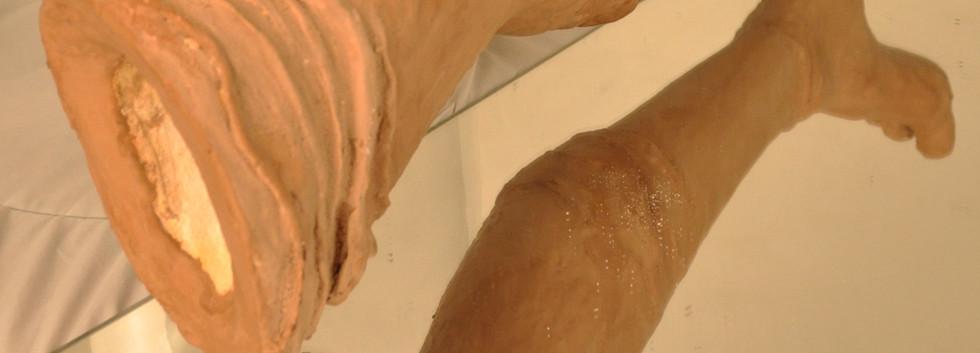 jambe 5.jpg