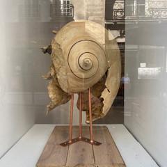 Fossile du Temps de l'Ecoute (2020)
