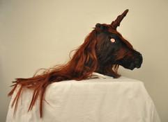 Chasing the Unicorn - 2014
