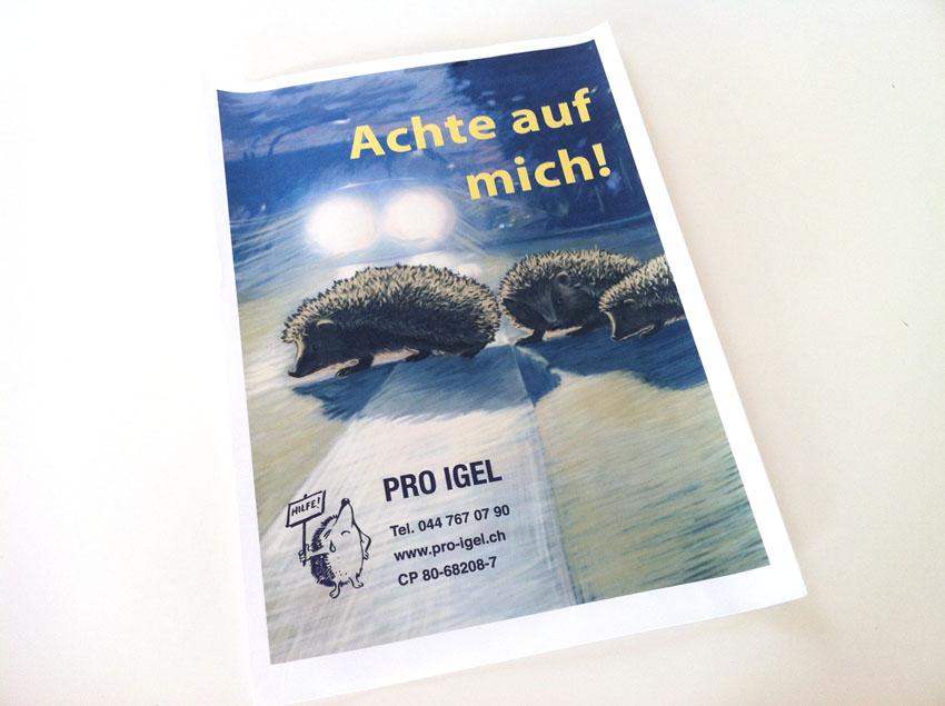 Pro Igel Plakat
