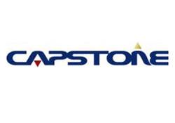 Partner Capstone