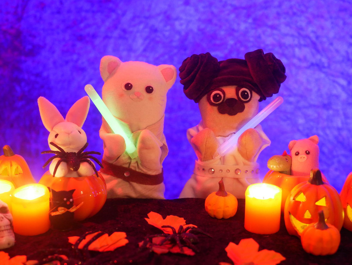 Lucky Cath - Halloween Star Wars