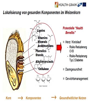 Healthgrain.png