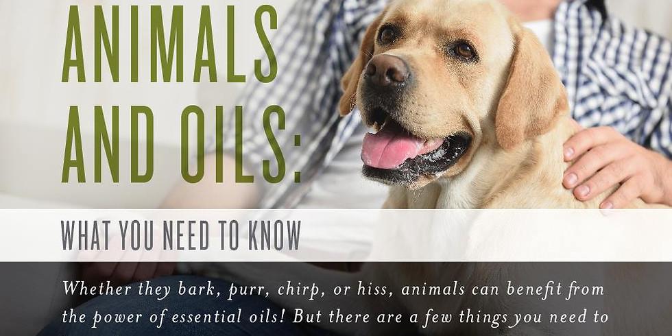 Jij en jouw hond, samen fit & gezond met essentiële oliën