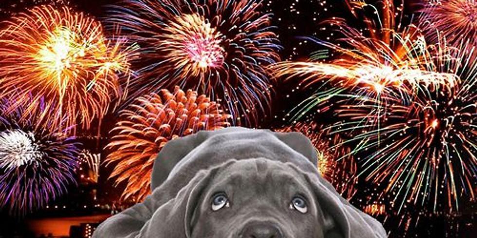 Lezing: Vuurwerkangst bij honden