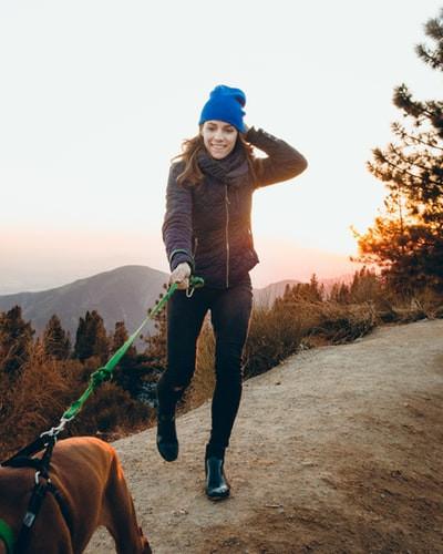 Dog walking for heart health