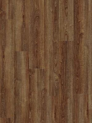 Moduleo. Transform. VERDON OAK 24885