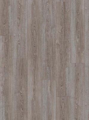 Moduleo. Transform. VERDON OAK 24962
