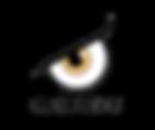 Logo1 - P.png