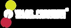 Laranja_Valor_Presente_Logotipo_fundo_az