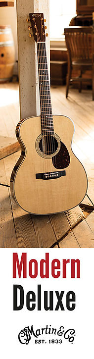 Premier-Guitar_Surroundscape_273x1042-B_