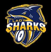 LS logo (1).png
