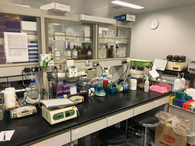 実験室3.jpeg