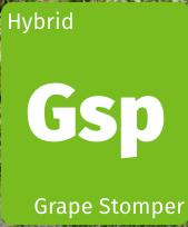 Grape Stomper